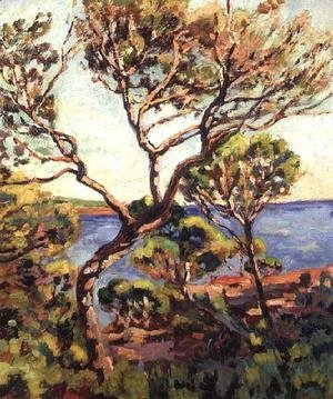Armand Guillaumin - Landscape in the Midi