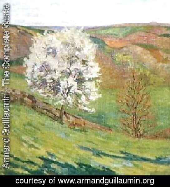 Trees in Blossomat Saint Cheron