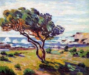 Armand Guillaumin - Gust Of Wind  Le Brusc